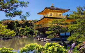 Picture trees, landscape, nature, pond, Park, Villa, Japan, temple, Kyoto, pavilion, Golden pavilion, Kinkaku-JI, Rokuon-JI temple