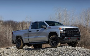 Picture forest, the sky, trees, stones, Chevrolet, pickup, Custom, Silverado, 2020