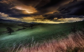 Picture field, the sky, clouds, hills