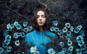 Picture girl, forest, blue, flowers, needles, Ronny Garcia