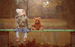 Picture autumn, nature, rain, bird, toy, dove, bear, girl, shop, baby, child, Ahmed Hanjoul