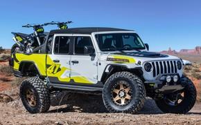 Picture Gladiator, Jeep, 2019, Flatbill