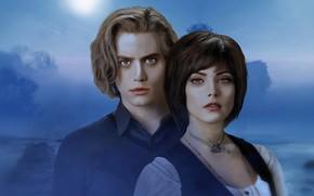 Picture fog, art, pair, vampires, Twilight
