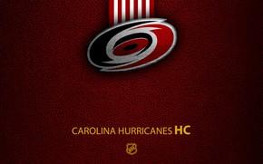 Picture wallpaper, sport, logo, NHL, hockey, Carolina Hurricanes