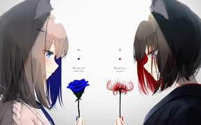 Picture flowers, girls, Lily, face-to-face