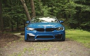 Picture BMW, Blue, Forest, F83