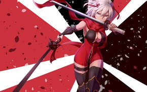 Picture Girl, Sword, Petals, Fate / Grand Order, The destiny of a great campaign