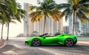 Picture machine, palm trees, building, Lamborghini, sports car, Spyder, Evo, Huracan