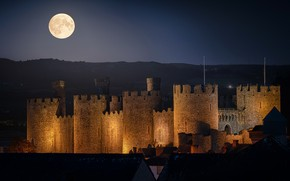 Picture night, castle, the moon