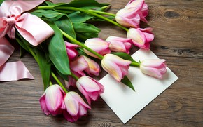Picture bouquet, tape, tulips