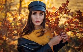 Picture autumn, look, leaves, Girl, Sergey Sorokin