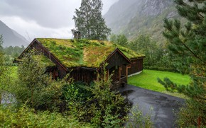 Picture road, greens, grass, trees, mountains, clouds, house, rain, overcast, rocks, lawn, moss, Norway, the bushes, …