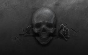 Picture metal, cracked, rose, skull, black background