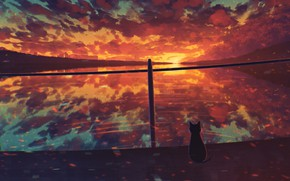 Picture cat, water, sunset, by Miloecute