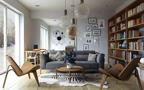 Picture living room, interior, library