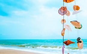 Picture sand, sea, wave, beach, summer, shore, shell, summer, beach, sea, sand, marine, seashells