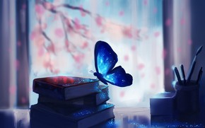 Picture fantasy, magic, art, butterfly, macro, glare, books, miscellaneous, blurred background