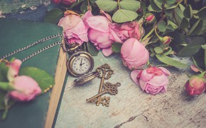 Picture flowers, style, watch, roses, book, pink, keys, buds