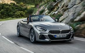Wallpaper road, stones, grey, markup, vegetation, BMW, slope, Roadster, BMW Z4, M40i, Z4, 2019, G29