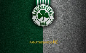 Picture wallpaper, sport, logo, football, Greek Super League, Panathinaikos