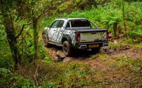Picture forest, the roads, pickup, Isuzu, D-Max, 2019, UK version, XTR