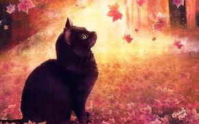 Picture Figure, Cat, Autumn, Leaves, Cat, Art, Cat, Illustration, Animal, Cats, Elisabeth Aarebrot Madsen, by Elisabeth …