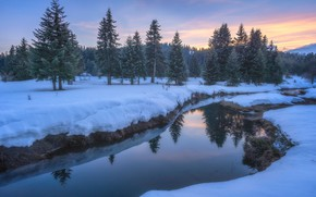 Picture winter, forest, the sky, snow, lake, reflection, river, shore, ate, the snow, twilight, pond