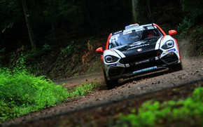 Picture forest, movement, rally, 2018, Abarth, 124 Rally