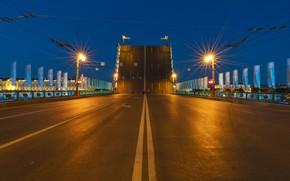 Picture Saint Petersburg, white nights, The Palace bridge