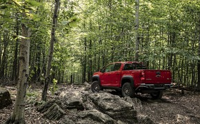 Picture trees, red, stones, Chevrolet, pickup, Colorado, 2019, ZR2 Bison
