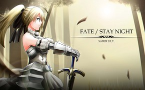 Picture girl, sword, the saber, Fate stay night, Fate / Stay Night