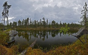 Picture forest, clouds, trees, clouds, lake, stones, the bushes