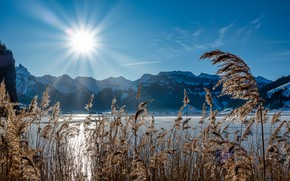 Picture grass, the sun, rays, landscape, mountains, nature, lake, Switzerland