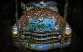 Picture machine, background, scrap, naturalism