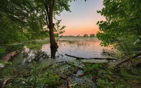 Picture lake, morning, backwater
