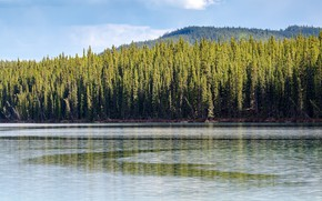 Picture forest, the sun, trees, mountains, lake, Canada, Yukon, Southern Lakes Region