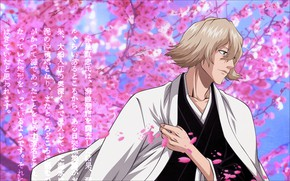 Picture petals, male, Bleach, Bleach
