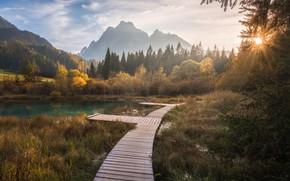 Picture autumn, forest, mountains, lake, bridges, Slovenia, Slovenia, Lake Zelenci, Озеро Зеленцы, Горы Понсе, Ponce Mountains