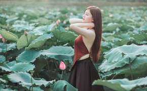 Picture leaves, girl, flowers, pose, hands, Asian, Lotus, long hair, closed eyes