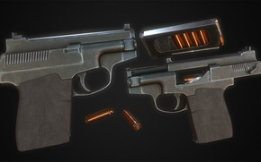 Picture A gun with a cut-off gases, A silenced pistol, PSS Vul