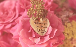 Picture pink, rose, Bud, pendant
