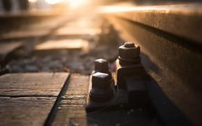 Picture bolt, railroad, nut