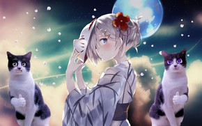 Picture girl, moon, sky, blue, anime, cat, purple
