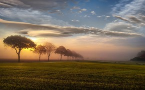 Picture field, the sky, sunset, nature, fog, The sun, Landscape