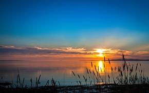Picture twilight, sky, landscape, nature, sunset, clouds, sun, plants, River