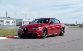 Picture Alfa Romeo, Four-leaf clover, Track, Gulia