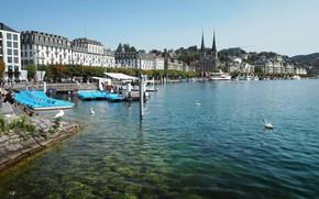 Picture people, building, promenade, catamaran, Luzern