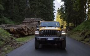 Picture yellow, SUV, logs, 4x4, Jeep, Mopar, 2019, Wrangler Rubicon 1941