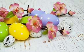Picture flowers, eggs, colorful, Easter, happy, wood, pink, blossom, flowers, spring, Easter, eggs, decoration