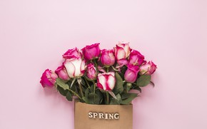 Picture flowers, roses, pink, pink, flowers, beautiful, spring, roses
